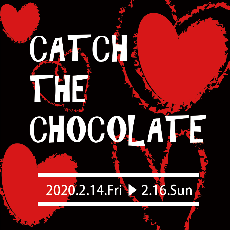 ♥♥♥CATH THE CHOCOLATE♥♥♥